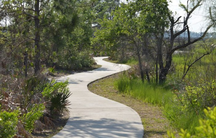 Bald Point State Park walk path