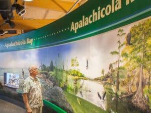 Apalachicola-National-Estuarine-Research-Reserve-EiWopP.tmp_